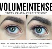 It's the BEST New Mascara